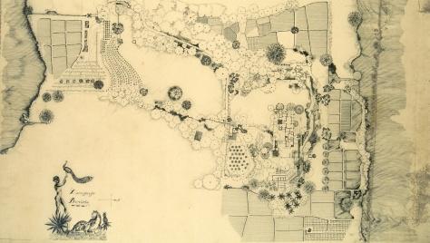 Drawing - Plan of the Lunuganga Estate.