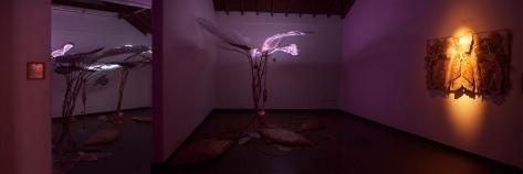 Art Musings - Shilo Shiv Suleman - Brindavan (Installation View)