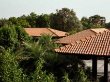 The Village House: Composition of roofs with gardens: The tile roof is a typical feature of villages in Gujarat.